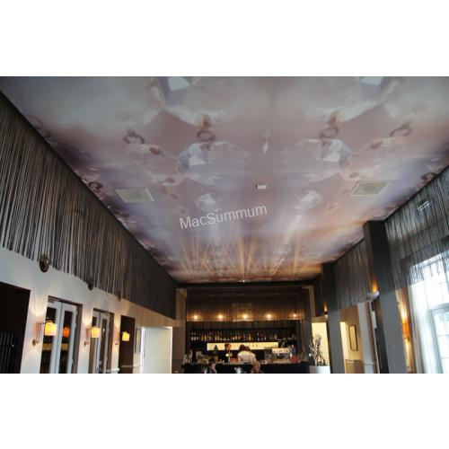 Plafond behangen met Wallrex